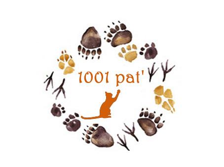 Logo 1001 Pat