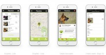 Petective, la super application pour retrouver un animal perdu !