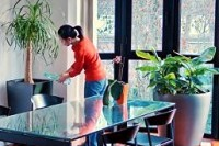 Arrosages des plantes par une catsitter