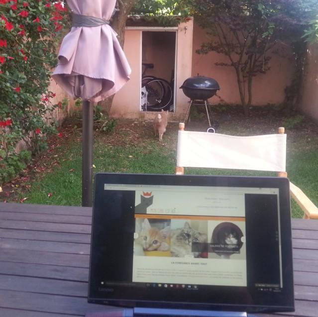 travailler-dans-un-jardin