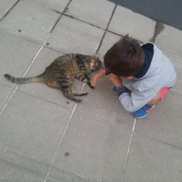 un-enfant-et-un-chat-a-porto