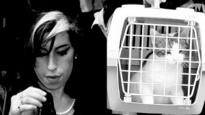 amy-winehouse-et-son-chat