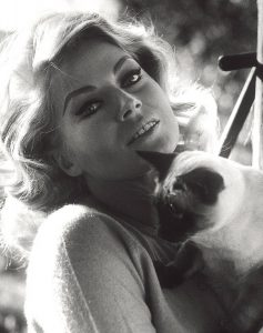 anita-ekberg-et-son-chat