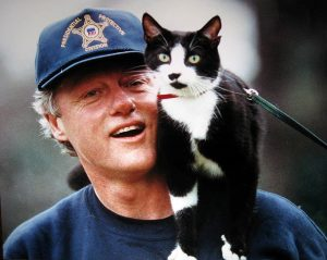 bill-clinton-et-son-chat