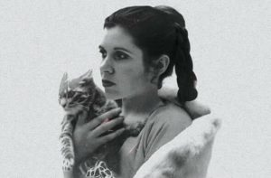 carrie-fisher-et-son-chat