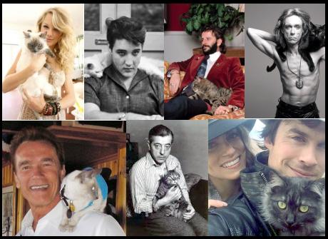Chat de star : plus de 100 photos de célébrités avec leur chat (M-Z)