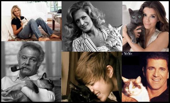 Chats de stars : plus de 100 photos de célébrités avec leur chat (A-L)