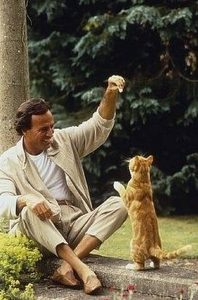 julio-iglesias-et-son-chat