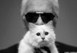 karl-lagerfeld-et-son-chat