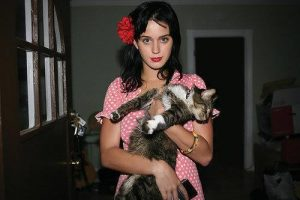 katy-perry-et-son-chat-2