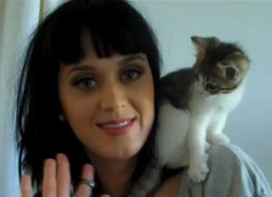 katy-perry-et-son-chat