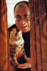 le-dalai-lama-et-son-chat