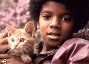 michael-jackson-et-son-chat
