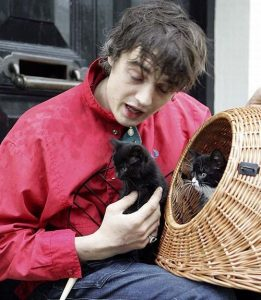 pete-doherty-et-ses-chats