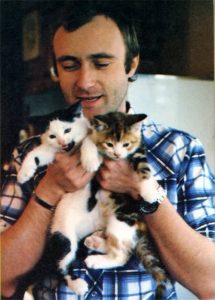 phil-collins-et-ses-chats