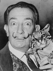 salvador-dali-et-son-chat