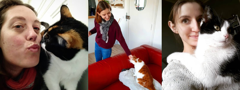 Comment faire garder mon chat - câlins avec les cat-sitters