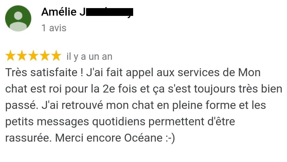 Avis MonChatEstRoi - Amélie J