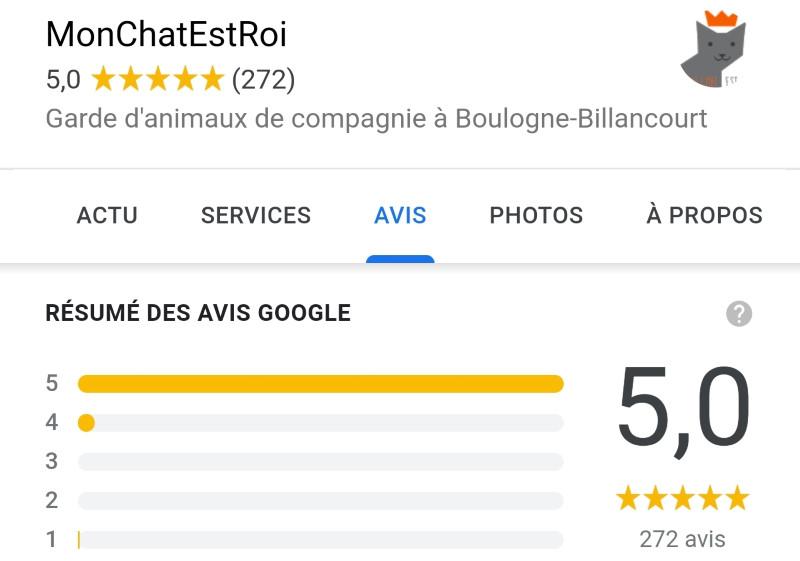 Avis MonChatEstRoi sur Google